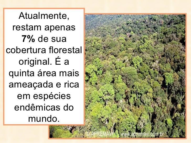 Atualmente, restam apenas  7%  de sua cobertura florestal original. É a quinta área mais ameaçada e rica em espécies endêm...