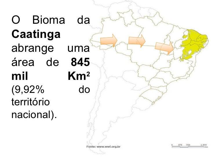O Bioma da  Caatinga  abrange uma área de  845 mil Km 2  ( 9,92% do território nacional) .