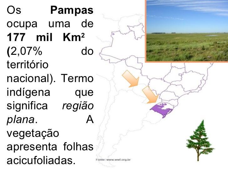 Os  Pampas  ocupa uma de  177 mil Km 2  ( 2,07% do território nacional). Termo indígena que significa  região plana . A ve...