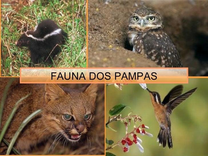 FAUNA DOS PAMPAS