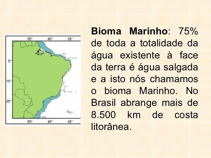<ul><li>Bioma Marinho : 75% de toda a totalidade da água existente à face da terra é água salgada e a isto nós chamamos o ...