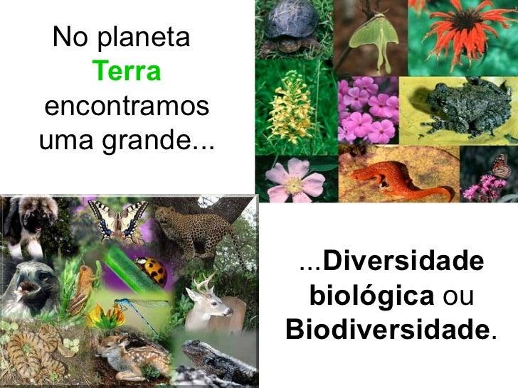<ul><li>No planeta  Terra   encontramos uma grande... </li></ul>... Diversidade biológica  ou  Biodiversidade .