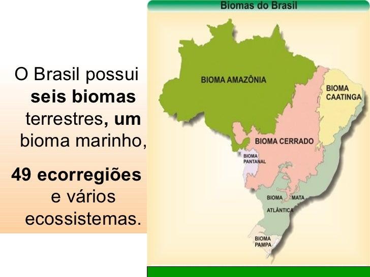 <ul><li>O Brasil possui  seis biomas  terrestres , um  bioma marinho, </li></ul><ul><li>49 ecorregiões  e vários ecossiste...