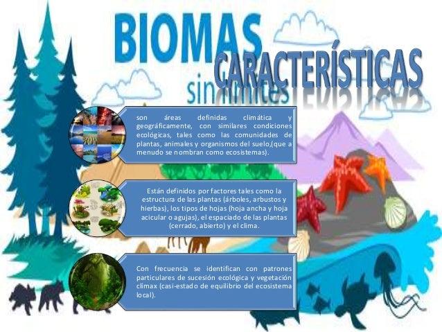 son áreas definidas climática y geográficamente, con similares condiciones ecológicas, tales como las comunidades de plant...