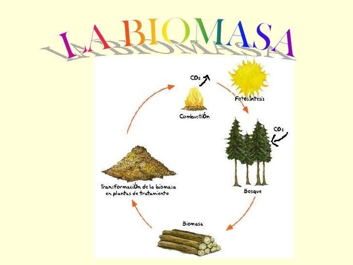 INDICE   1. ¿ Que es la biomasa? • Como se obtiene.   2. ¿Tipos de residuos utilizados?   3. Clasificación de la biomasa. ...