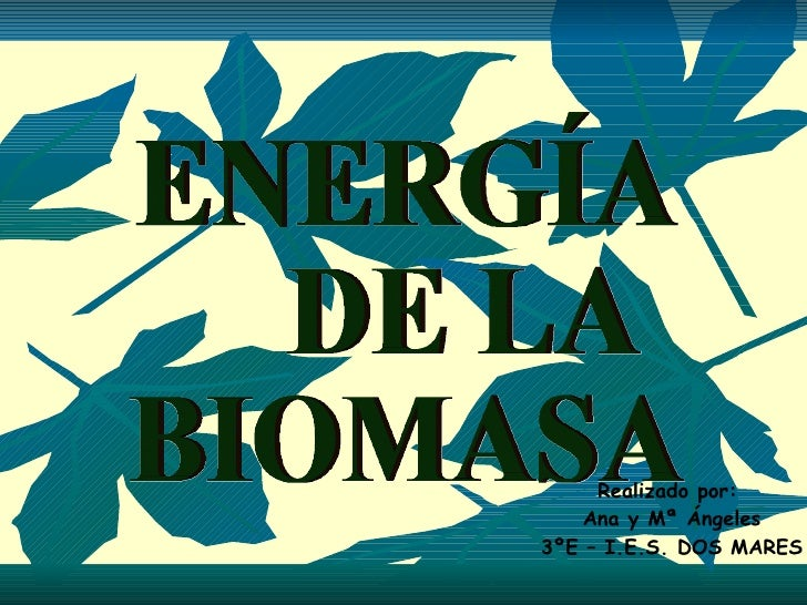 Realizado por:  Ana y Mª Ángeles 3ºE – I.E.S. DOS MARES ENERGÍA DE LA  BIOMASA