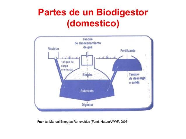 Biomasa for Partes de un vivero forestal