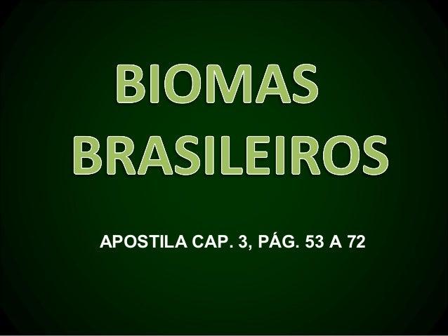 APOSTILA CAP. 3, PÁG. 53 A 72