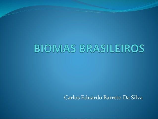 Carlos Eduardo Barreto Da Silva