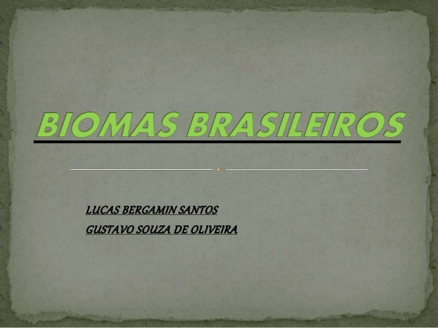 LUCAS BERGAMIN SANTOS  GUSTAVO SOUZA DE OLIVEIRA