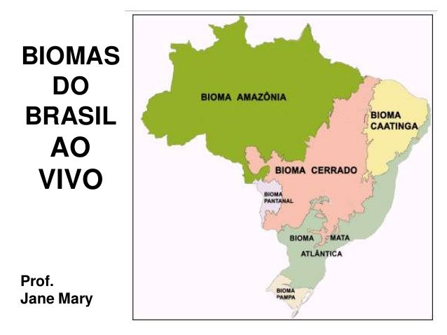 BIOMAS DO BRASIL AO VIVO Prof. Jane Mary