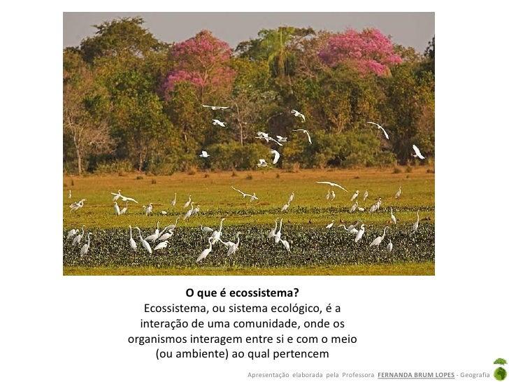 O que é ecossistema?   Ecossistema, ou sistema ecológico, é a  interação de uma comunidade, onde osorganismos interagem en...