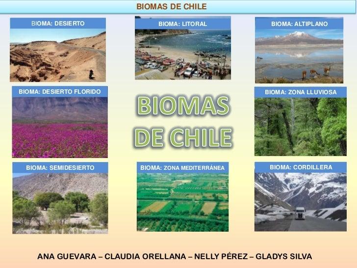 BIOMAS DE CHILE   BIOMA: DESIERTO              BIOMA: LITORAL         BIOMA: ALTIPLANOBIOMA: DESIERTO FLORIDO             ...