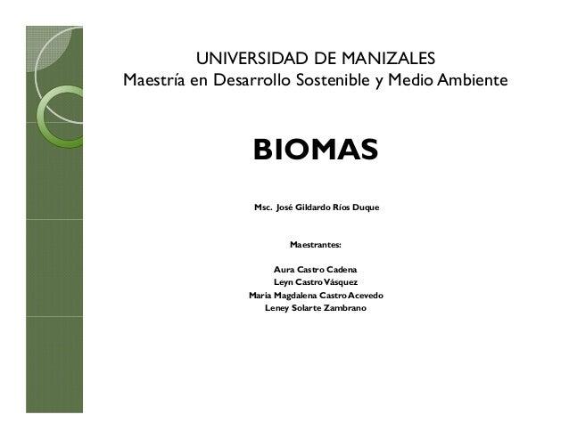 UNIVERSIDAD DE MANIZALES Maestría en Desarrollo Sostenible y Medio Ambiente  BIOMAS Msc. José Gildardo Ríos Duque  Maestra...