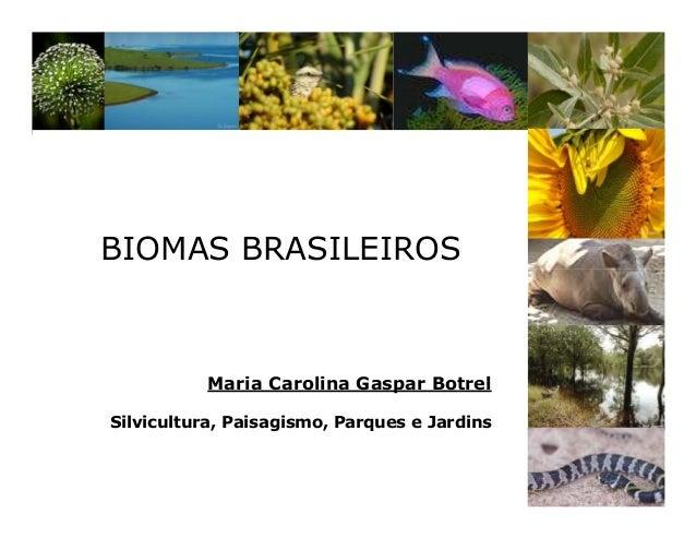 BIOMAS BRASILEIROS Maria Carolina Gaspar Botrel Silvicultura, Paisagismo, Parques e Jardins