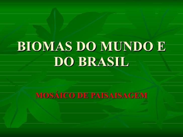 BIOMAS DO MUNDO E DO BRASIL MOSÁICO DE PAISAISAGEM