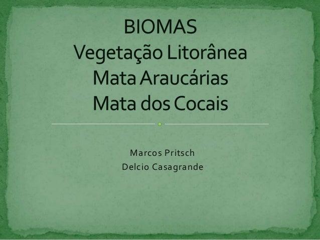 Marcos Pritsch  Delcio Casagrande