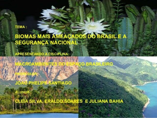 TEMA :BIOMAS MAIS AMEAÇADOS DO BRASIL E ASEGURANÇA NACIONALAPRESENTANDO A DISCIPLINA:MACROAMBIENTES DO ESPAÇO BRASILEIROPR...
