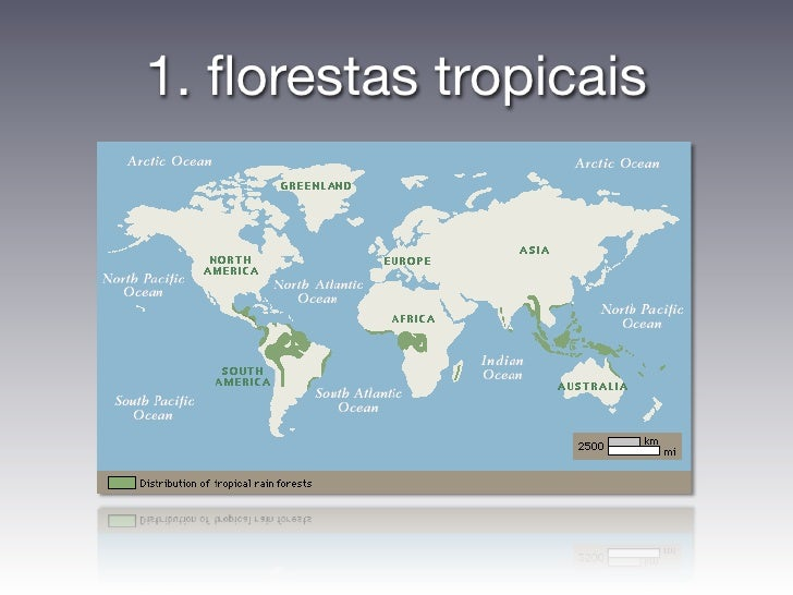 1. florestas tropicais