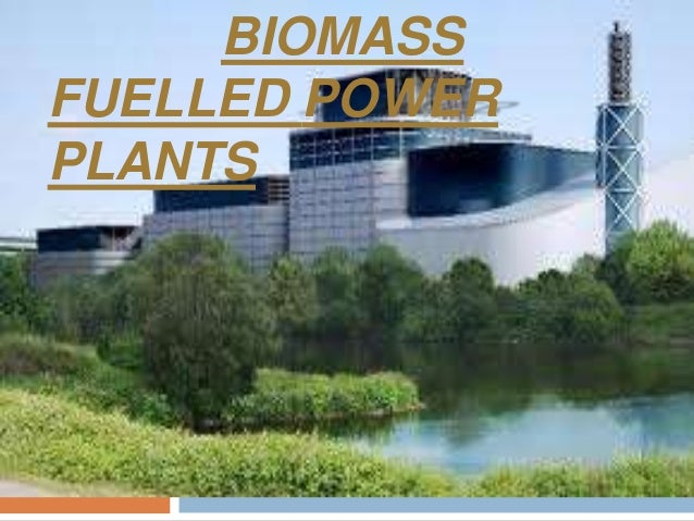 biomass power plant - photo #36
