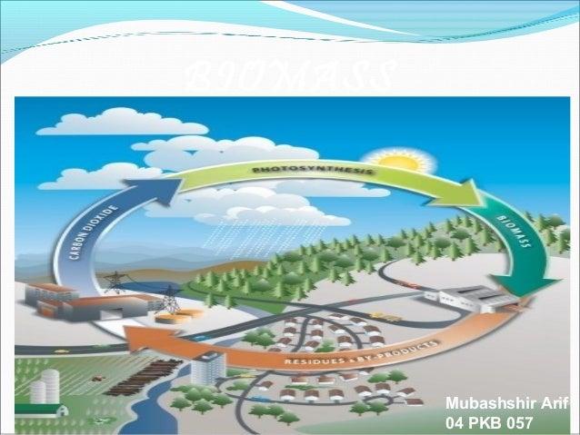 BIOMASS  Mubashshir Arif 04 PKB 057