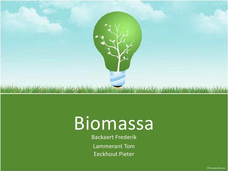 Biomassa BackaertFrederik Lammerant TomEeckhout Pieter