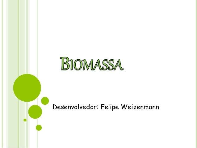 Desenvolvedor: Felipe Weizenmann