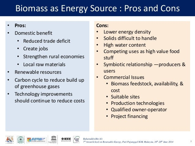 Biomass As A Renewable Energy Source: The case of ...