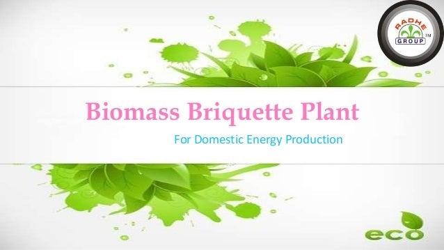 Biomass Briquette Plant For Domestic Energy Production