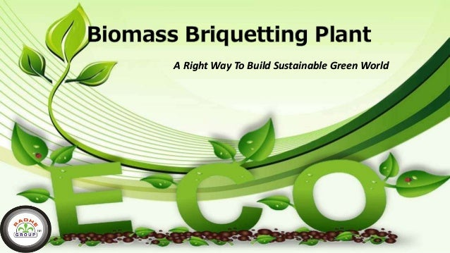 Biomass Briquetting Plant A Right Way To Build Sustainable Green World