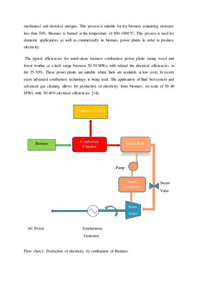 Biomass Conversion Technologies