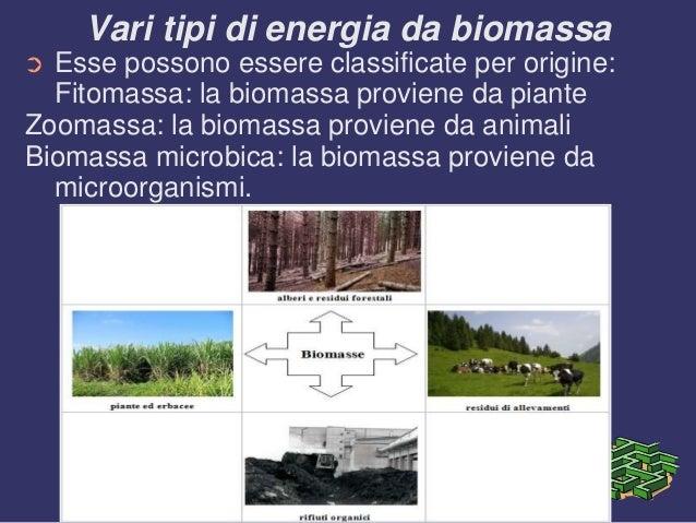 Biomasse - Diversi tipi di energia ...