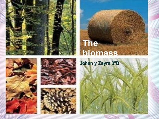 TheLa biomassa biomassJohan y Zayra 3ºB