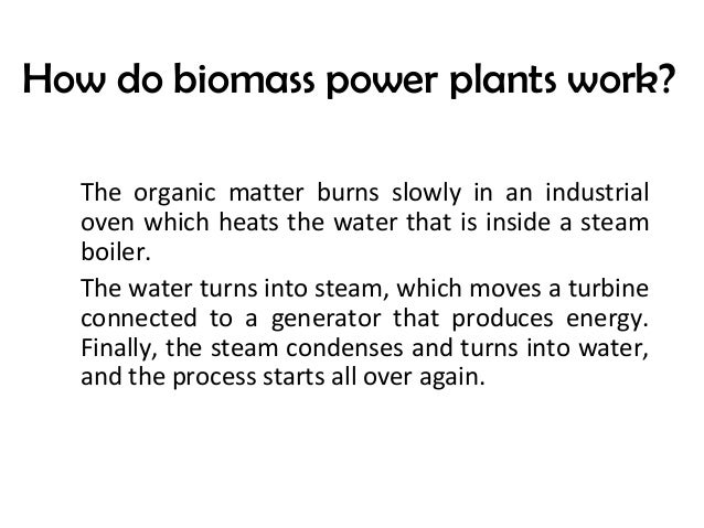 How Does Biomass Work ~ Biomass energy