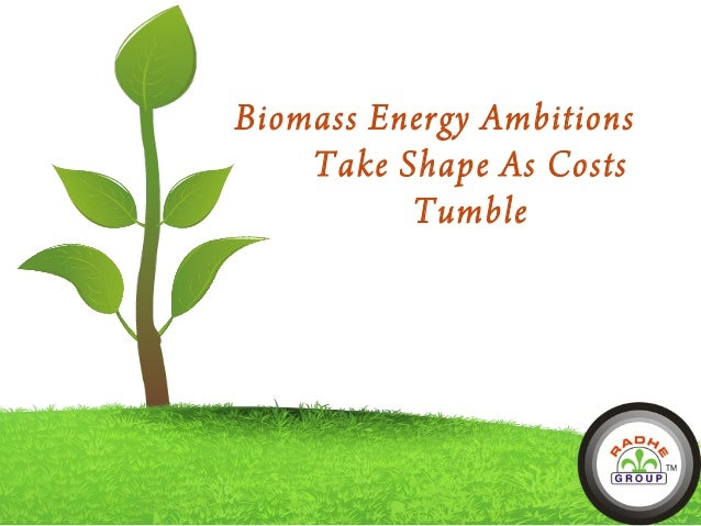 Biomass Energy Ambitions Take Shape As Costs Tumble