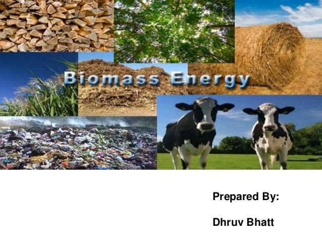 Prepared By: Dhruv Bhatt