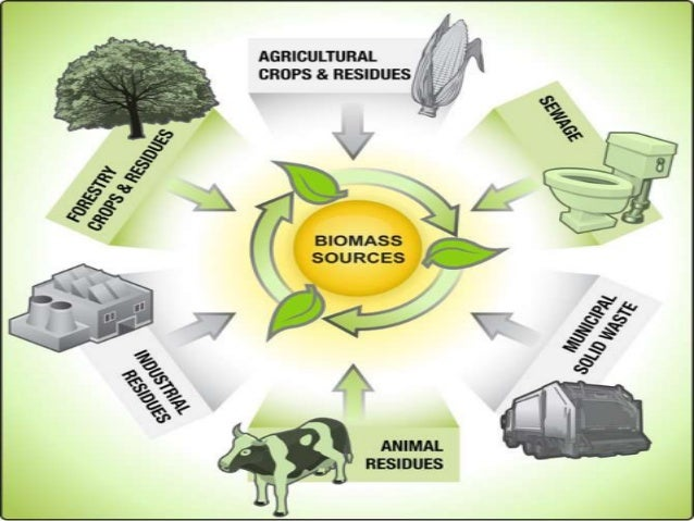 Biomass Power Biomass energy