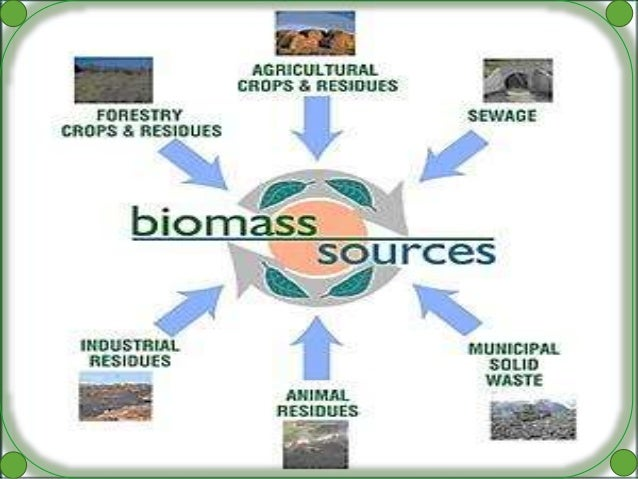 Electricity From Biomass Ppt