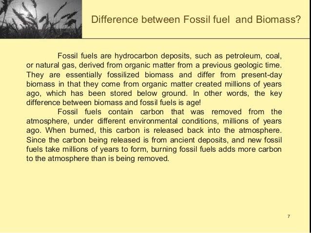 Biomass Report