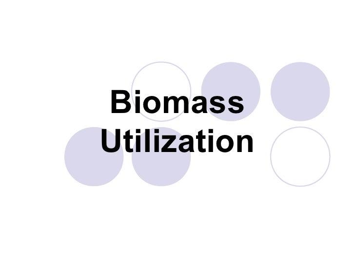 Biomass Utilization