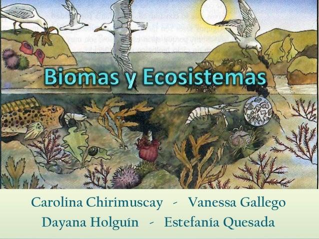 Carolina Chirimuscay - Vanessa Gallego Dayana Holguín - Estefanía Quesada