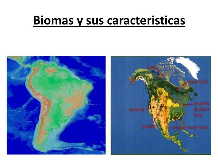 Biomas y sus caracteristicas<br />