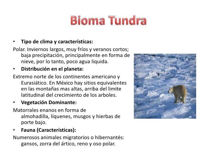 Biomas y sus principales caracter sticas for Tipos de arboles y sus caracteristicas