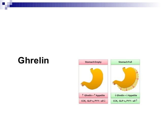 What are the four fat burning foods picture 3
