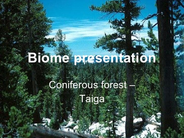 Biome presentation Coniferous forest – Taiga