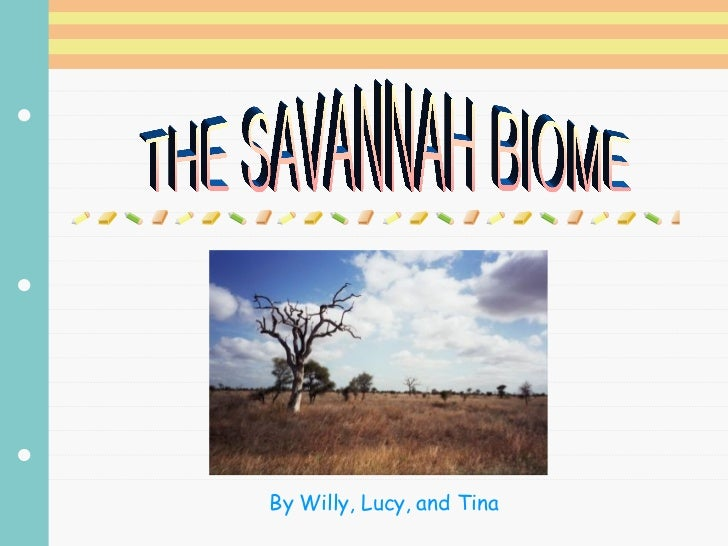 THE SAVANNAH BIOME By Willy, Lucy, and Tina