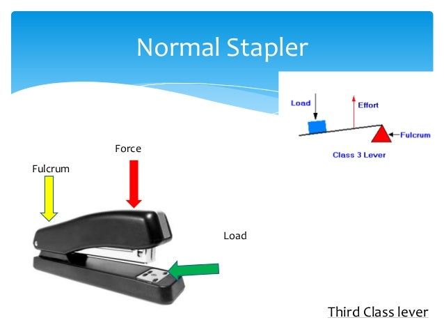 Examples Of First Second Third Class Levers