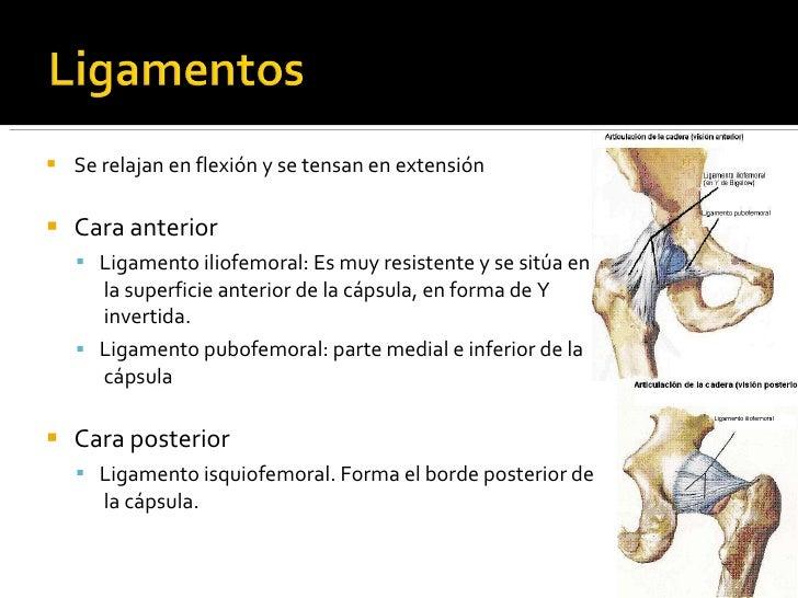 Biomecanica cadera, pruebas funcionales y ortopedicas