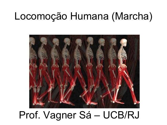 Locomoção Humana (Marcha) Prof. Vagner Sá – UCB/RJ