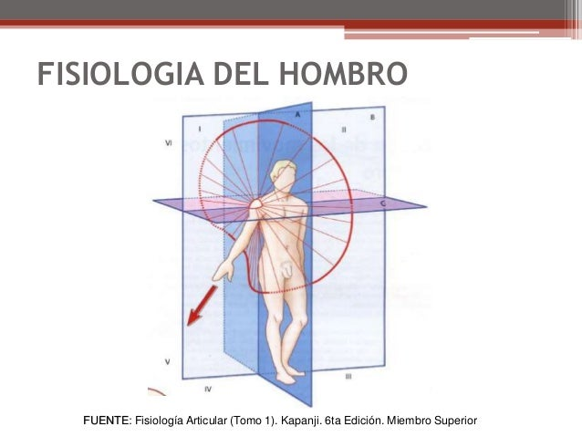 Biomecanica del hombro parte 1